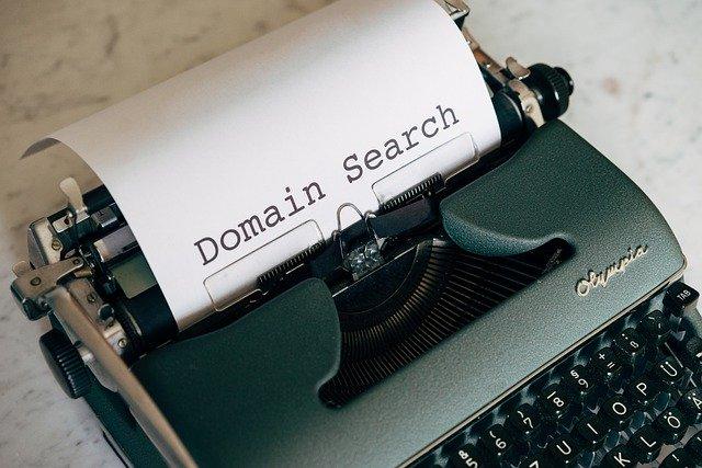 Shopify Domain Search