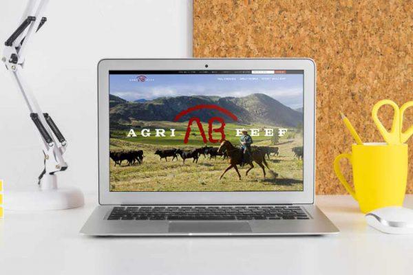 agri-beef-portfolio